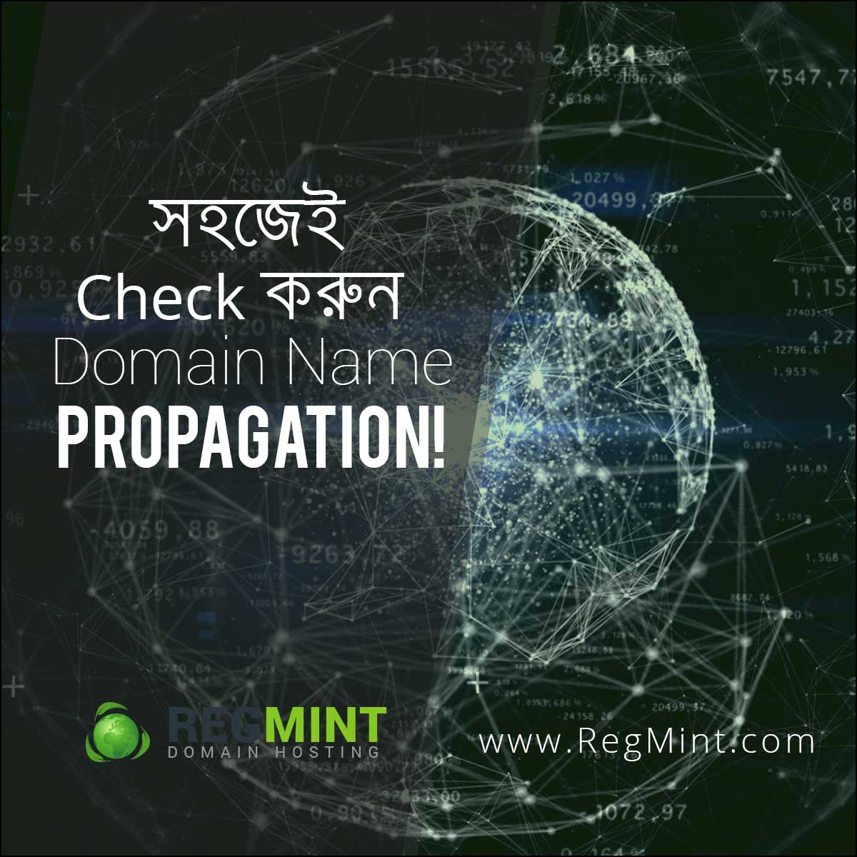 সহজেই Check করুন Domain Name Propagation!